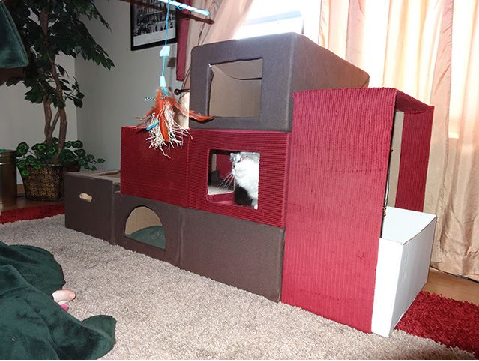 awesome cat houses wait for it from cardboard boxes. Black Bedroom Furniture Sets. Home Design Ideas