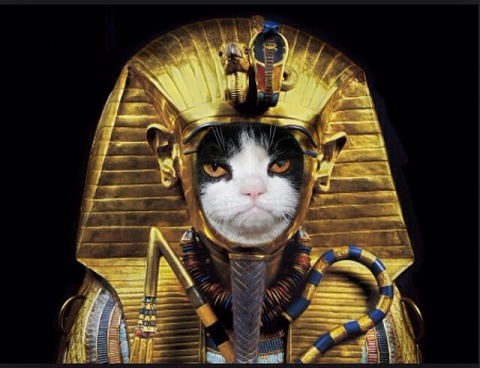 egyptionpharo