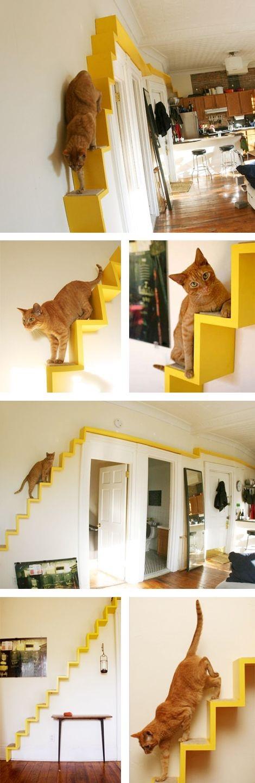 catstairs2