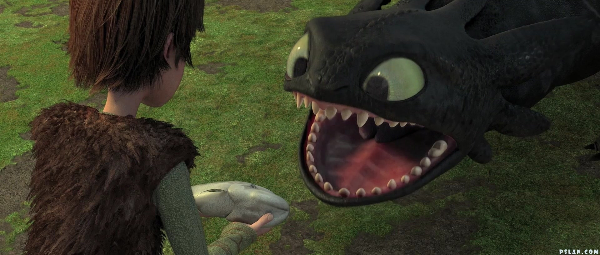 toothless3