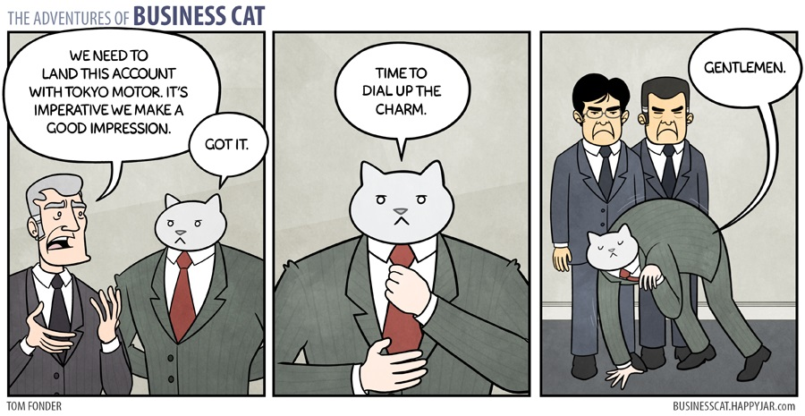businesscat6