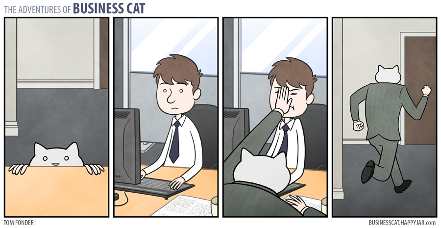 businesscat5