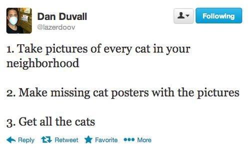 getallthecats