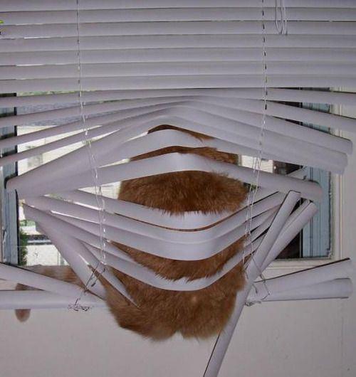 blinds23