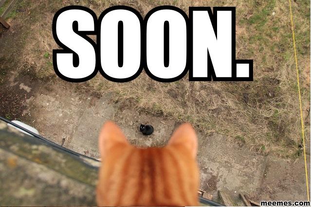 soon12