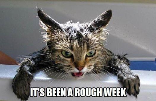 roughweek