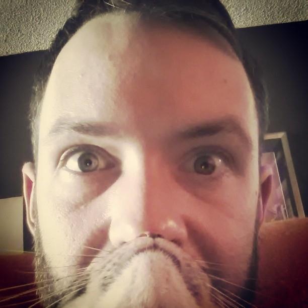 catbeard2