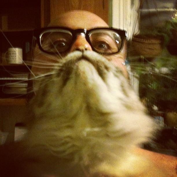 catbeard9