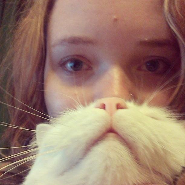 catbeard1
