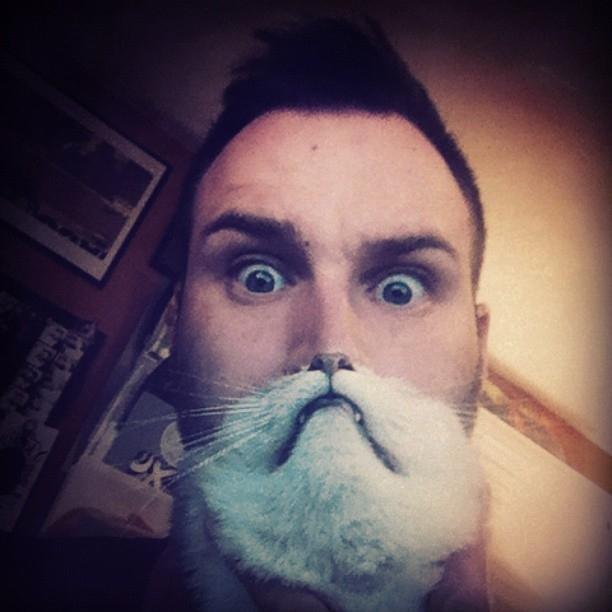 catbeard3