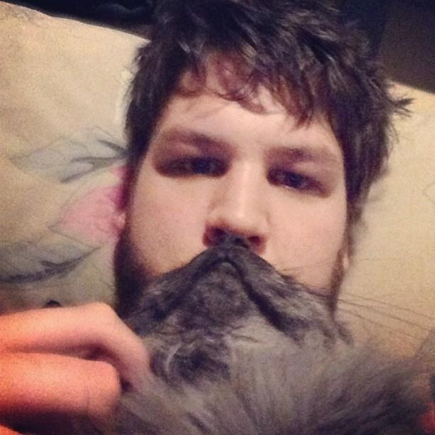 catbeard8