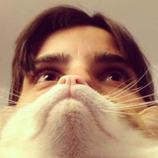 catbeard14