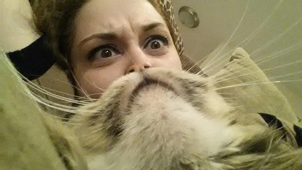 catbeard12
