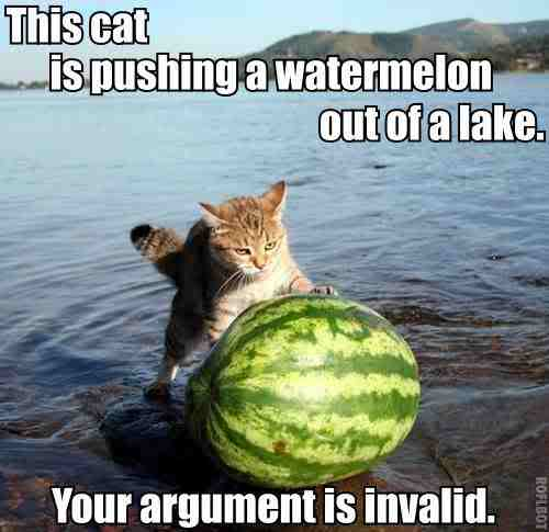 catwatermelon