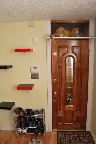 26 Hacks That Will Make Any Cat Owner S Life Easier