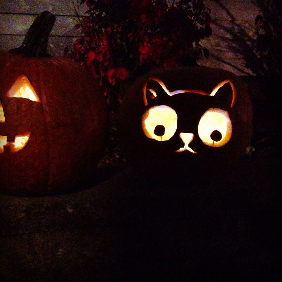 11 awesome cat pumpkin carving ideas!