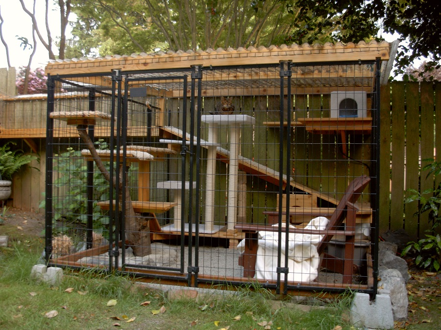 Catios Iz The New Backyard Feature That You Ll Absolutely
