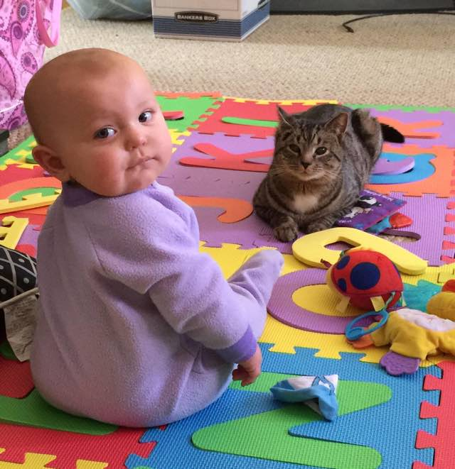 She Took In A Kitten When She Was Five Months Pregnant