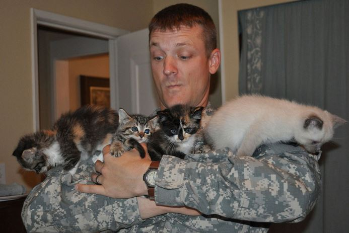 soldier holding kittens