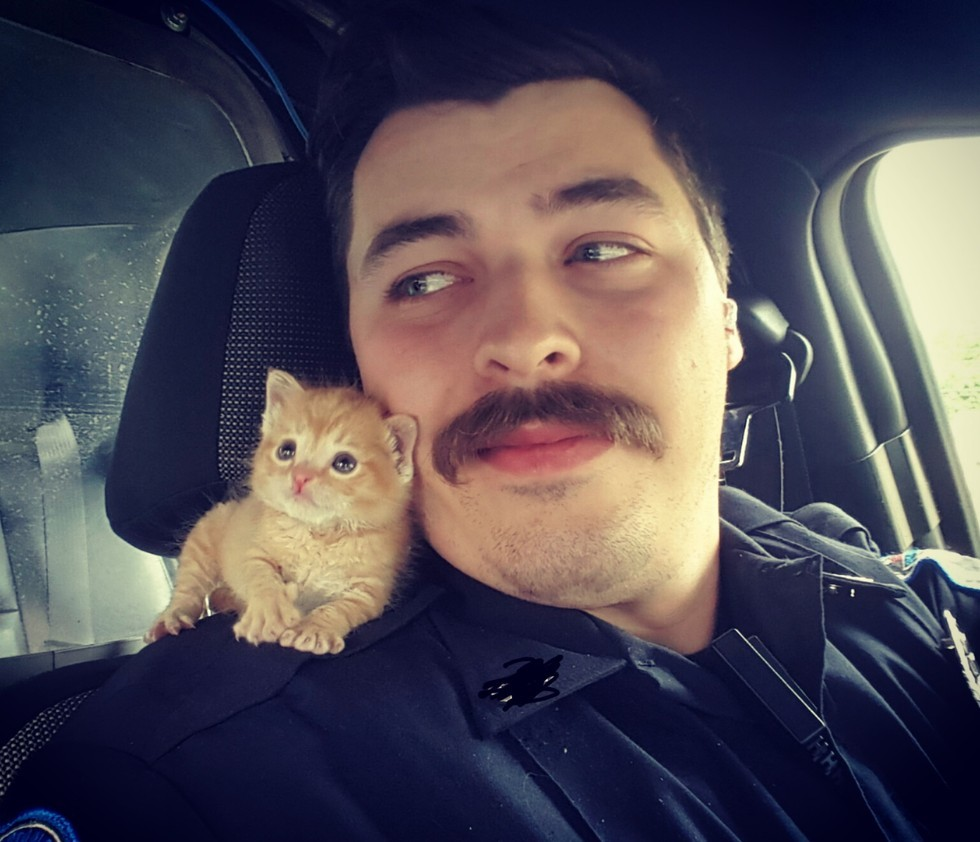 officer and kitten ride along