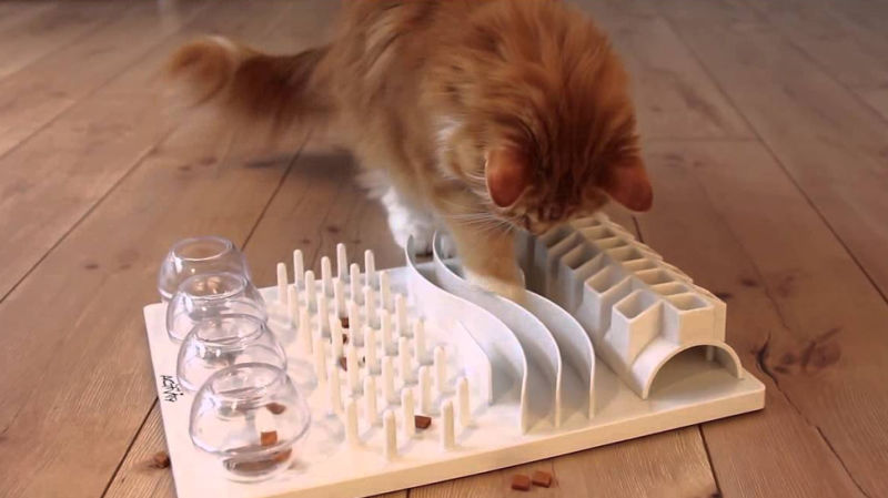 cat using a food puzzle