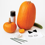 pumpkin materials