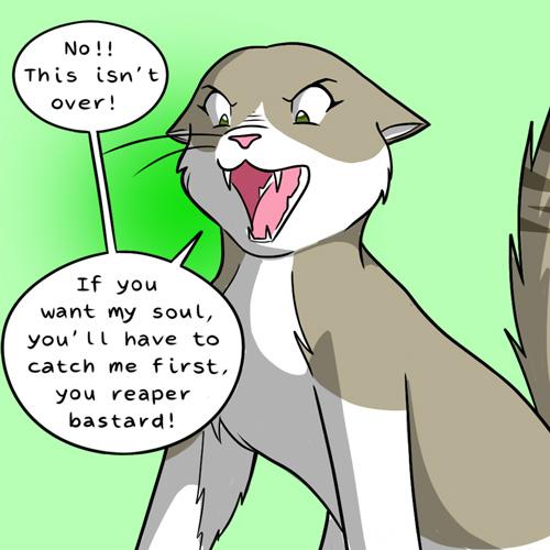 raccoon cat comic part 2