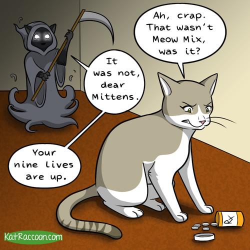 raccoon cat comic part 1