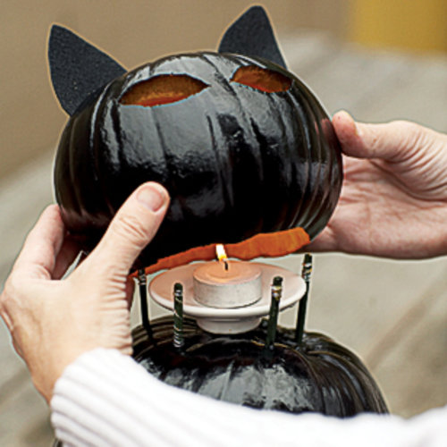 placing pumpkin cat head on body