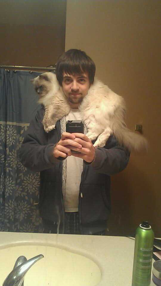 cat scarf 16