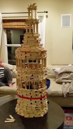 cat inside tower