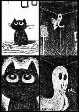Is It True That Cats Can See Ghosts