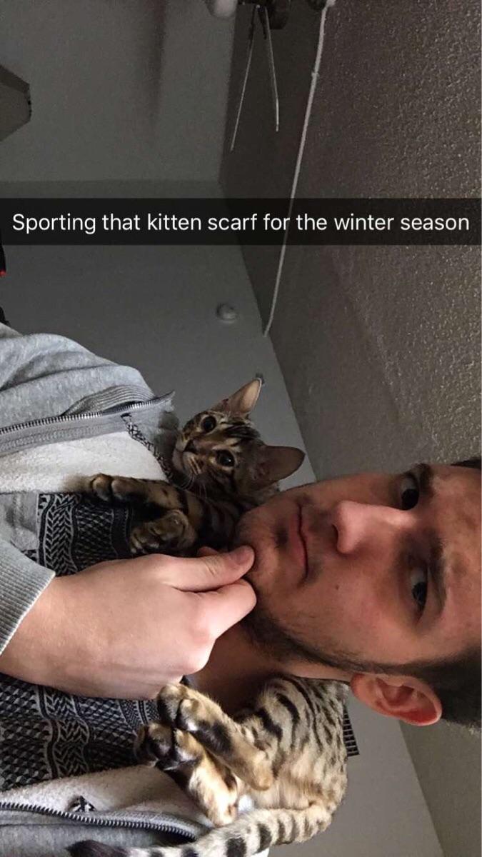 cat scarf 2