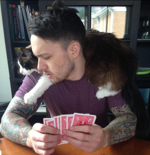 cat scarf 18
