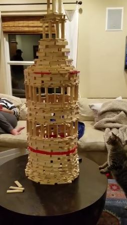 cat inspecting tower