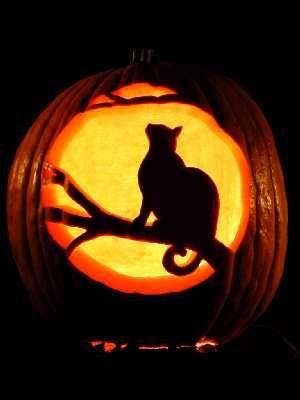 11 awesome cat pumpkin carving ideas. Black Bedroom Furniture Sets. Home Design Ideas