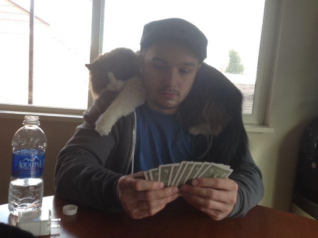 cat scarf 15