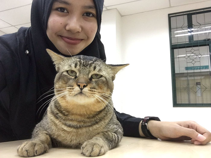 cat with student