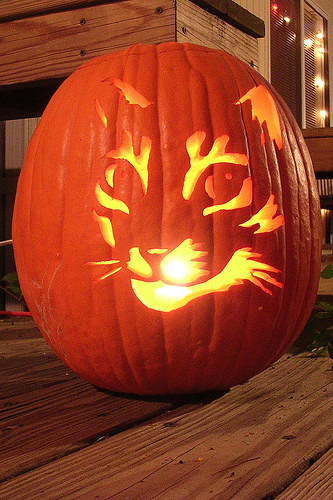 Awesome cat pumpkin carving ideas