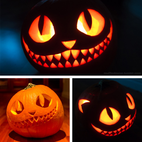 Pumpkin Carving Ideas Black Cat
