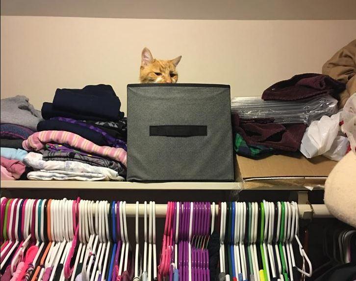 hiding spot 10