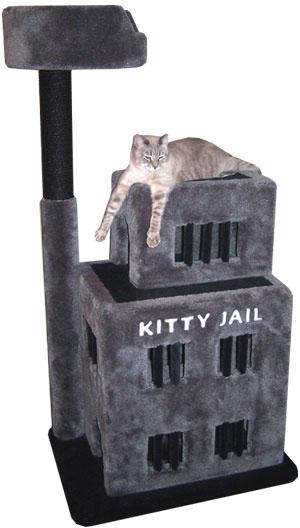 kitty jail