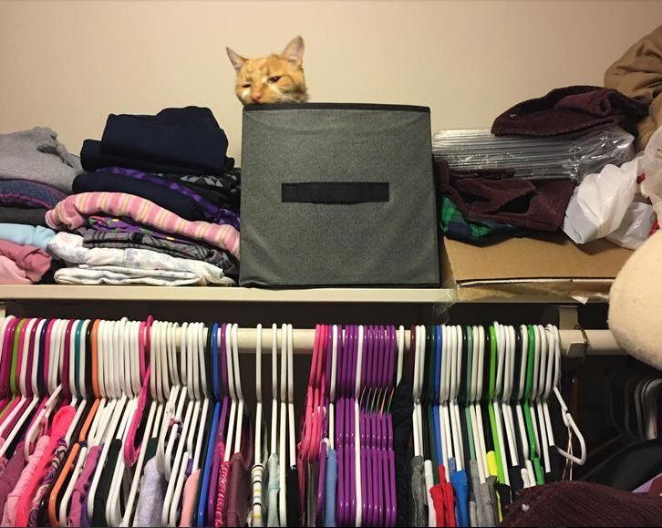 hiding spot 11