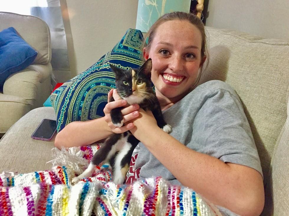 callie the kitten 4