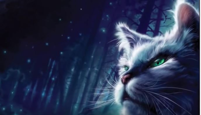 Warrior Cats New Book Release Date