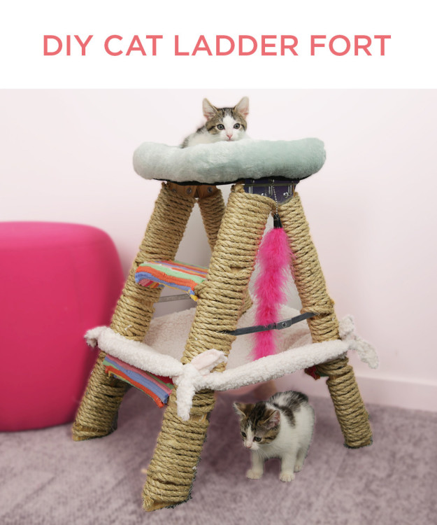 ladderfort