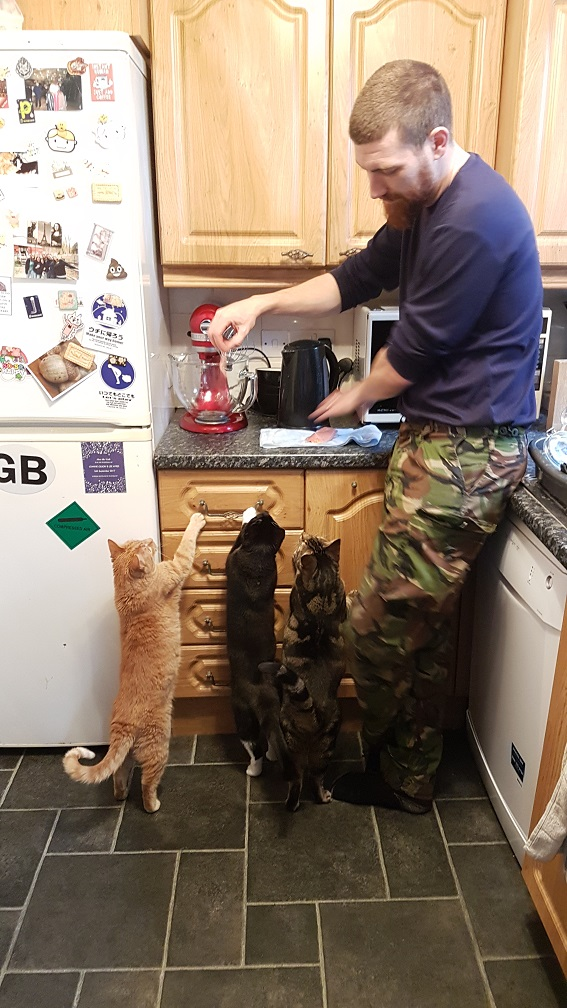 helping out in the kitchen