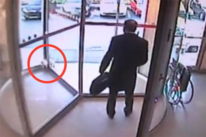 stray cat stuck in revolving door