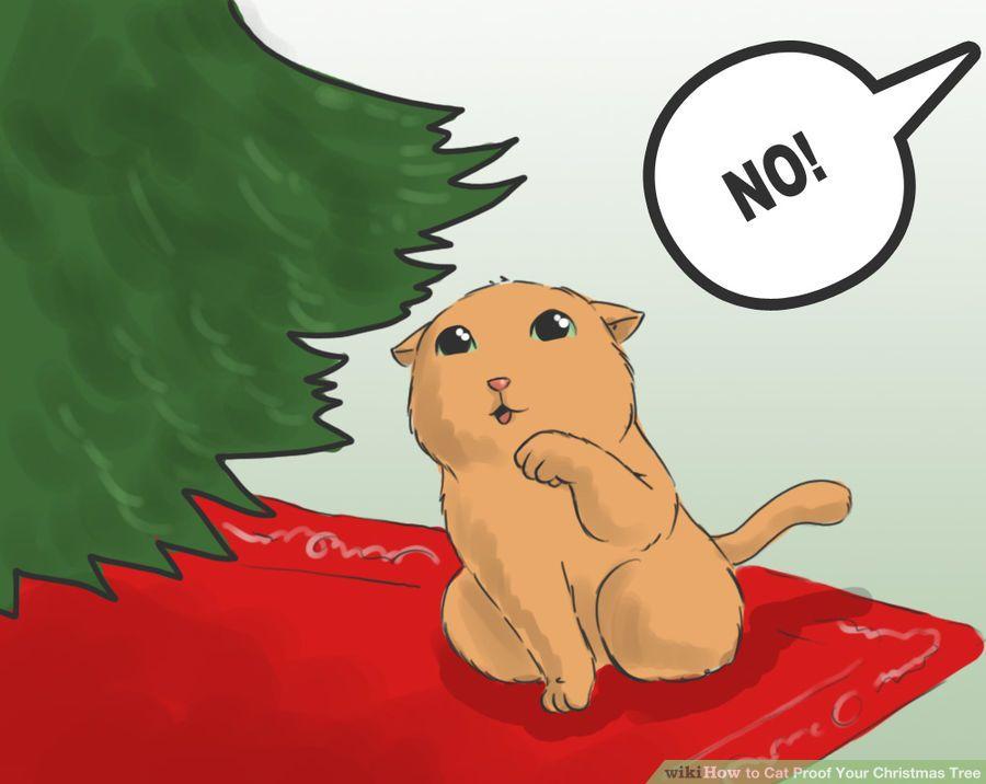 cat proof 4