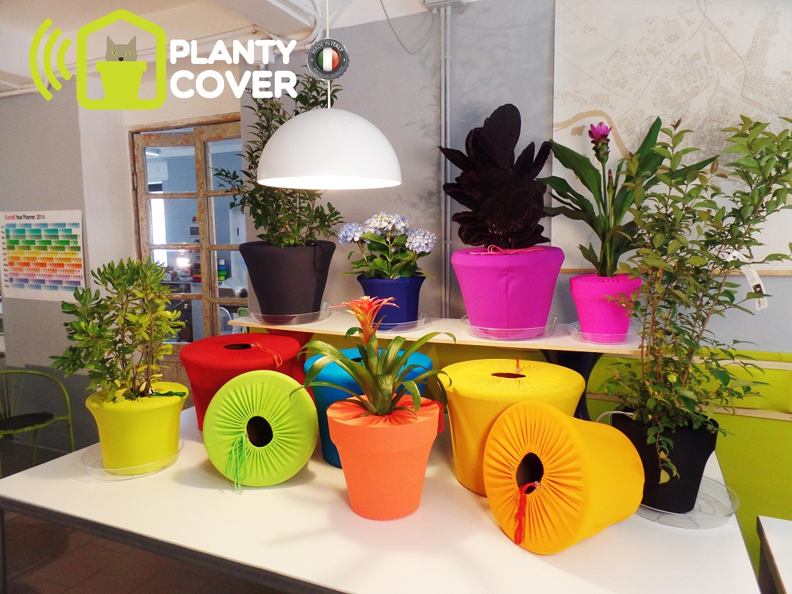 plantycover 1